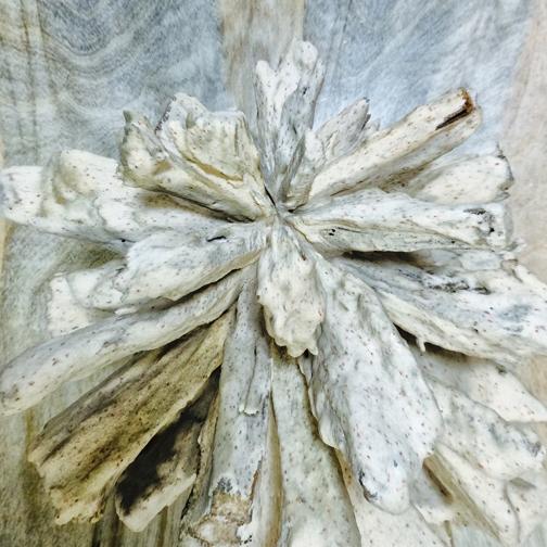Abstract Natural3