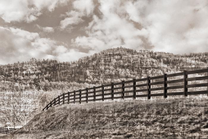 Fields of Virginia 1154