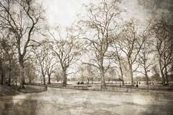A Winter in Hyde Park | London UK