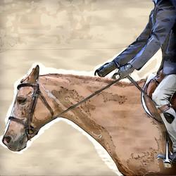 Middleburg Horse 5122
