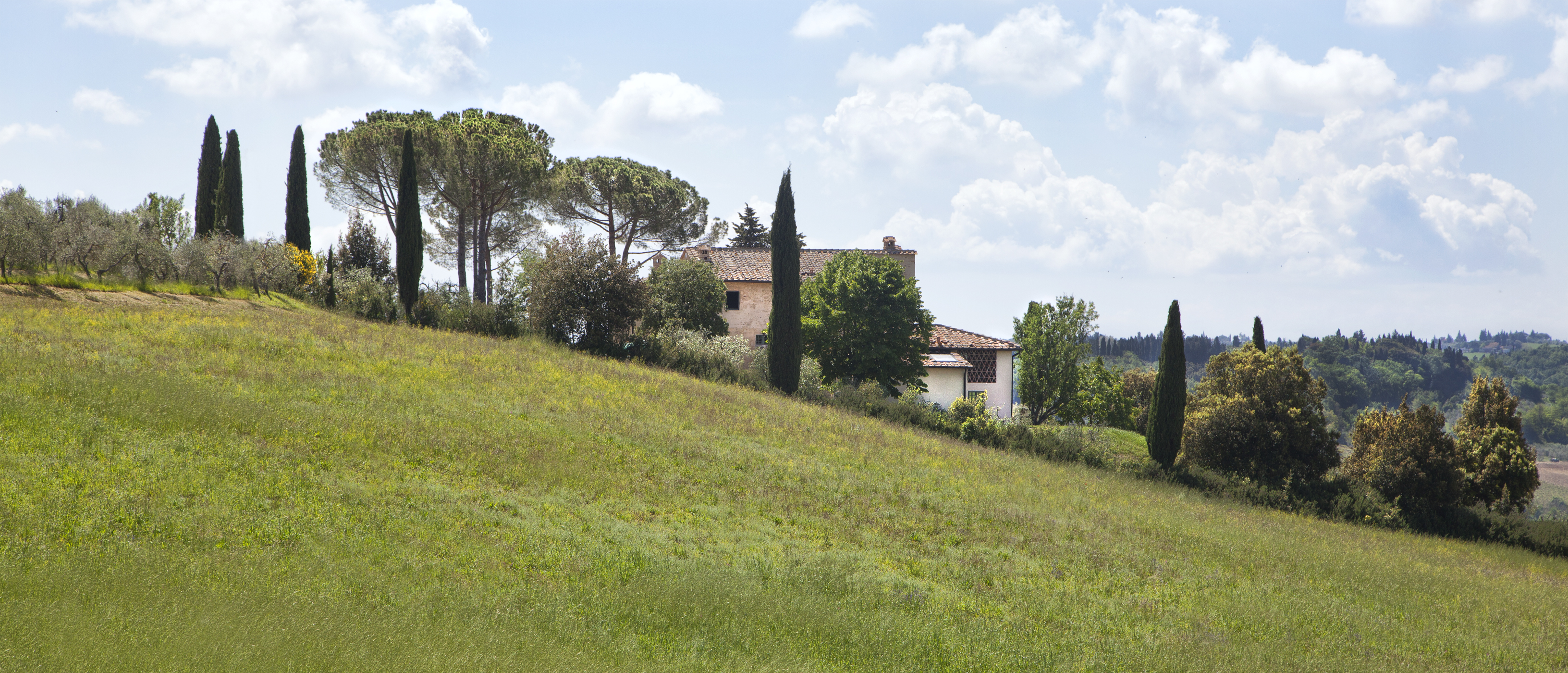 Tuscan Villa 3743