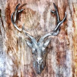 FullSizeRender 16 Silver Wood Antler