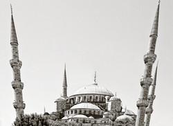 Turkey6345