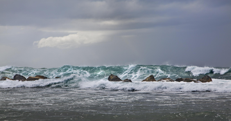 Dorado Beach | Puerto Rico 2256