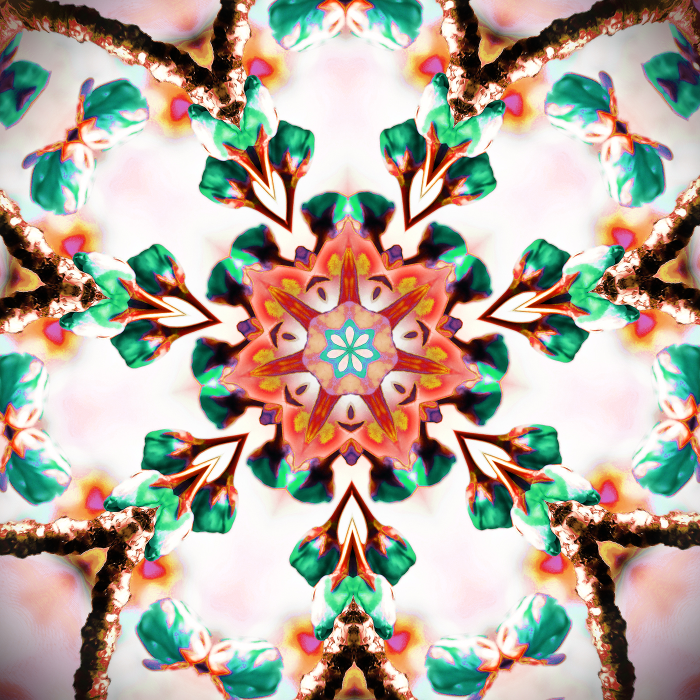 Cherry Blossom Kaleidoscope B-3