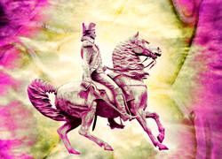 Pink IMG_1261