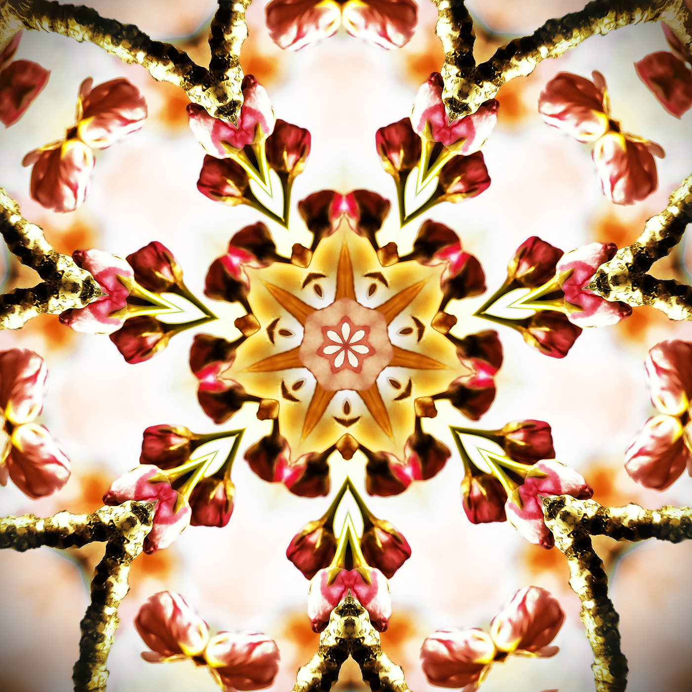 Cherry Blossom Kaleidoscope B-2