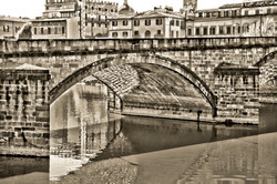 Florence Italy 2231