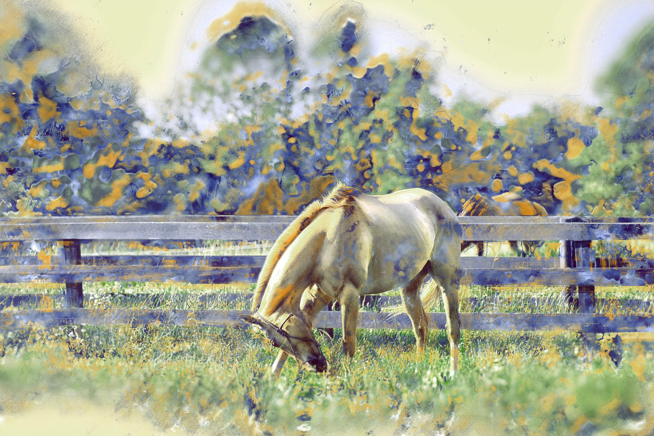 Middleburg Horses 5168 art