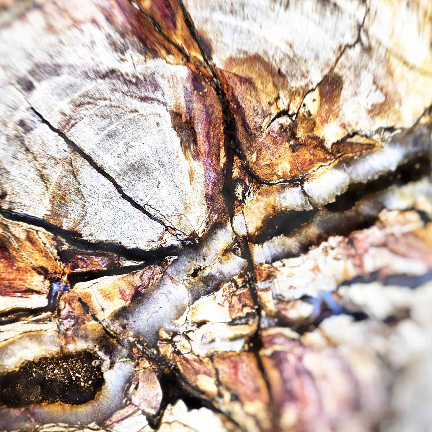 Wood 2177