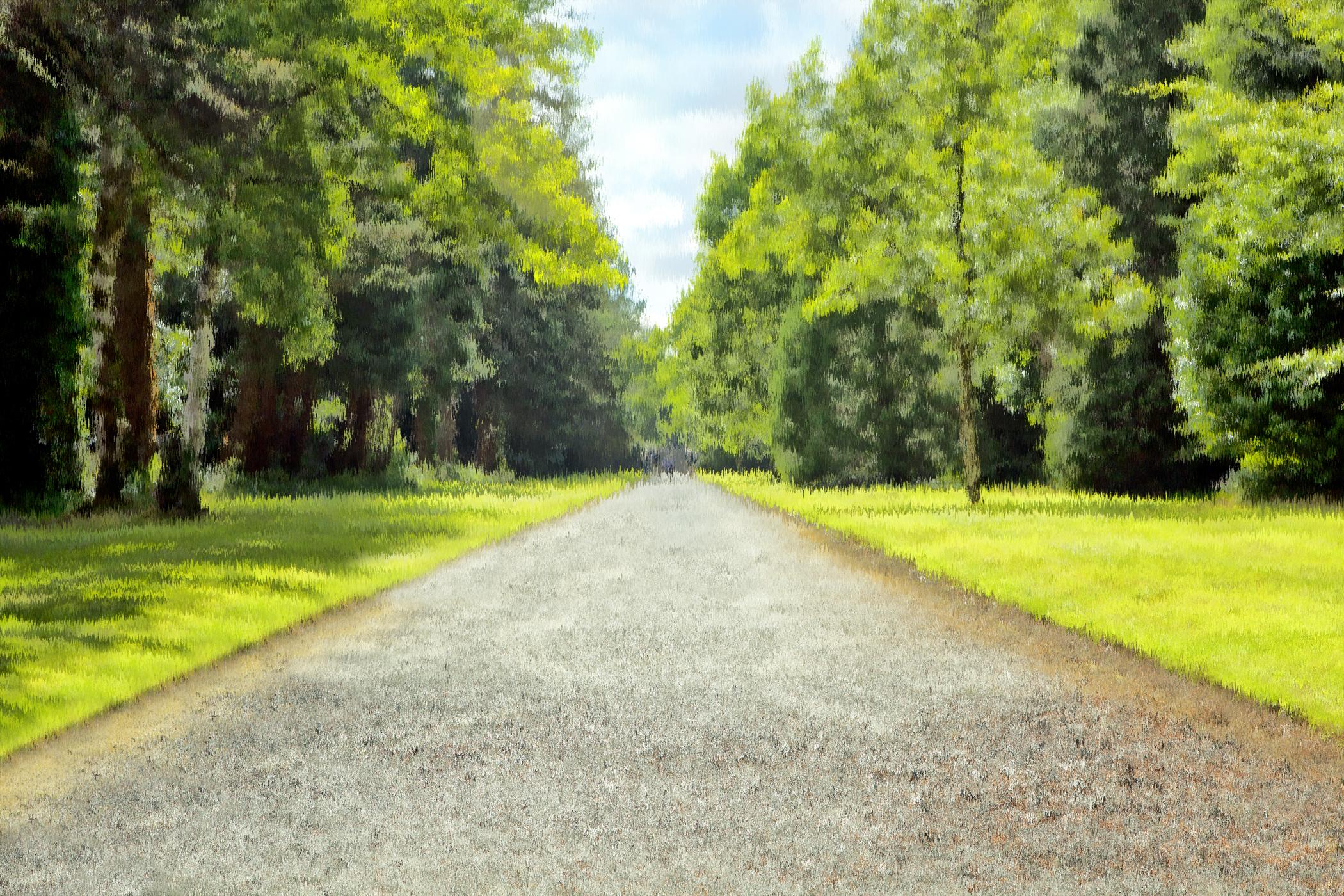 Summer in Ashford _ Ireland 5990