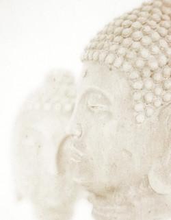 Mitreya Buddhas
