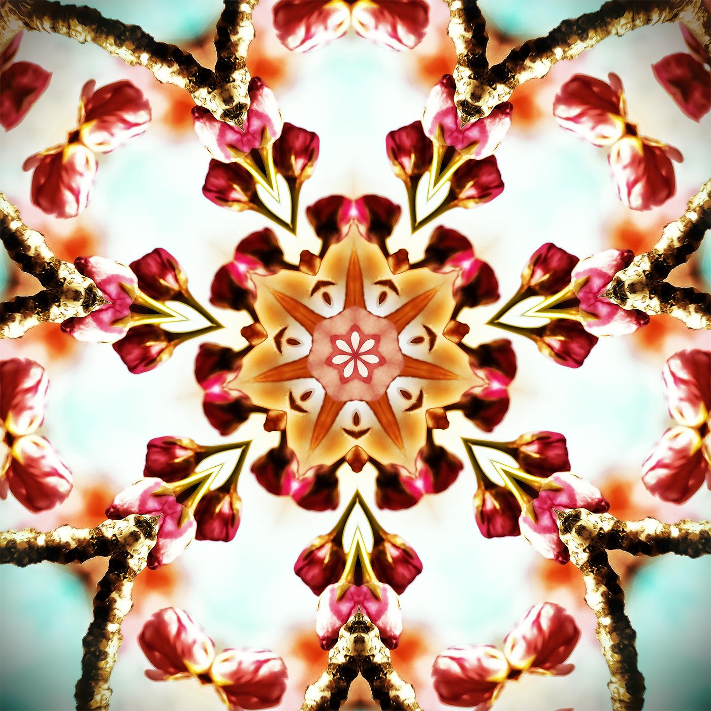 Cherry Blossom Kaleidoscope B-1