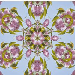 Cherry Blossom Kaleidoscope 2828-1