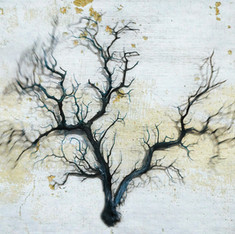 branches 1566