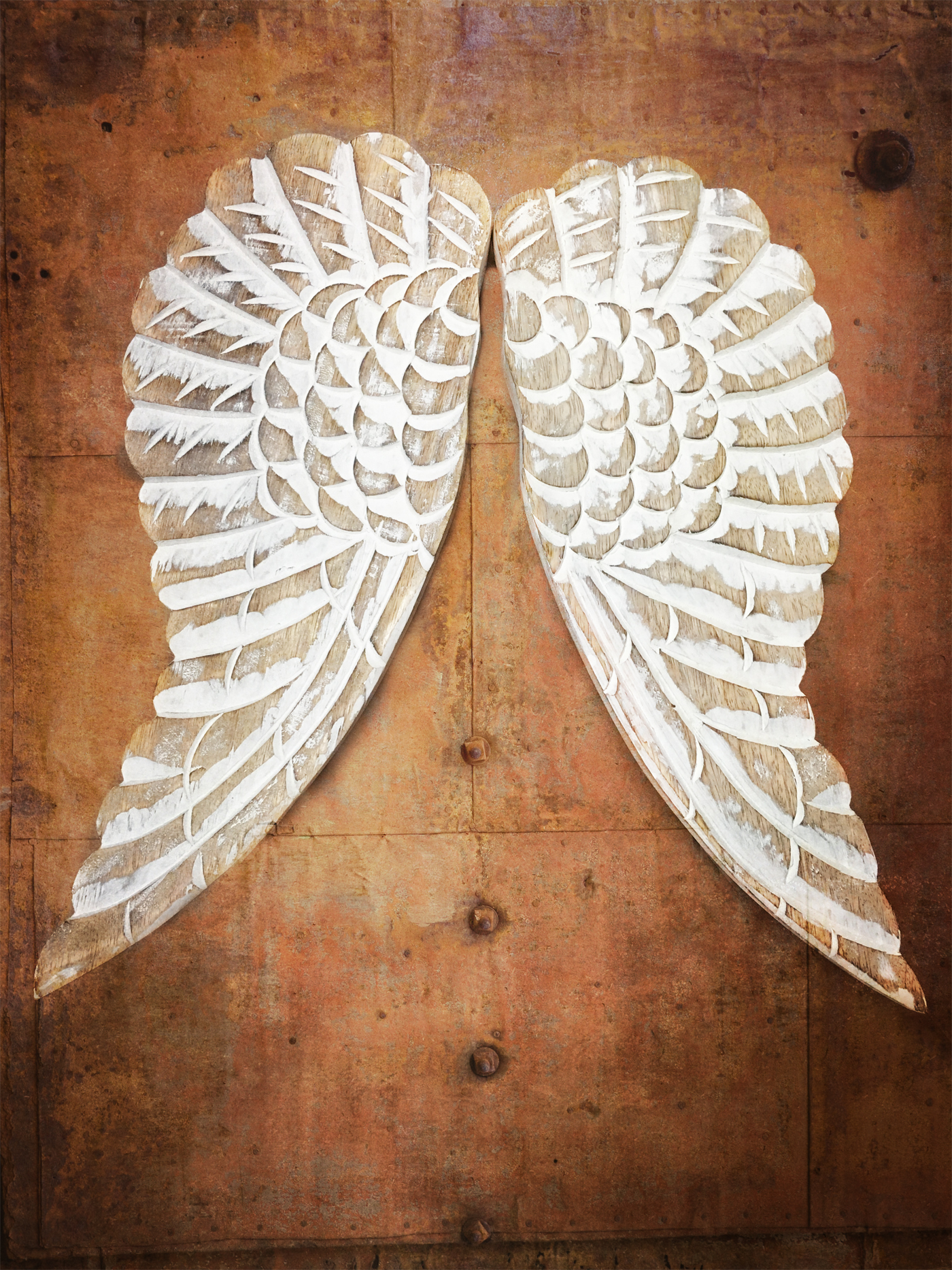 Angel Wings 2361-2