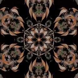 Cherry Blossom Kaleidoscope 2828-3