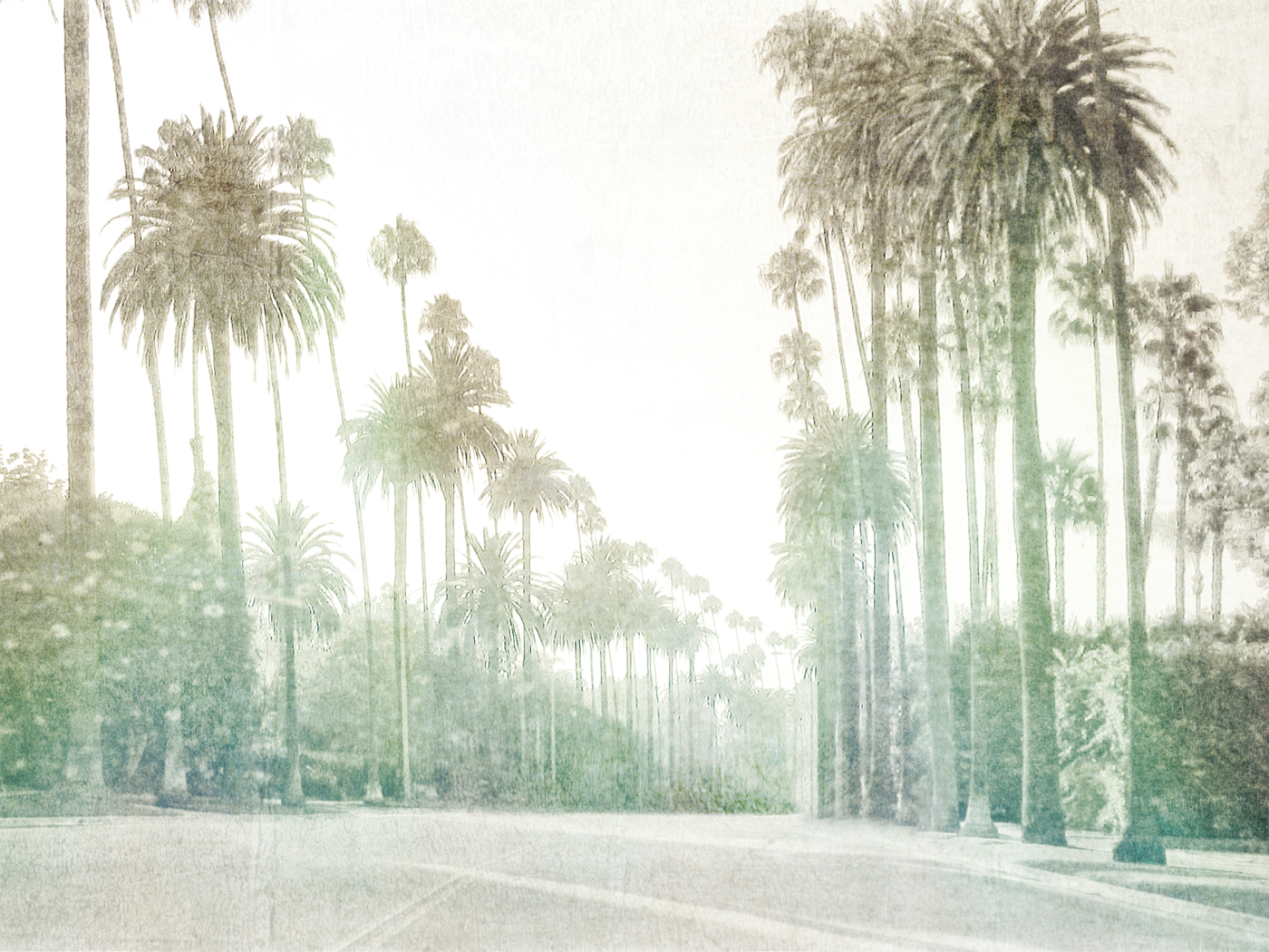 Palms of Bev Hills 7812-C