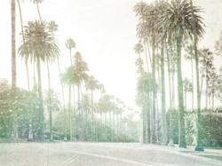 Palms of Bev Hills 7812-C