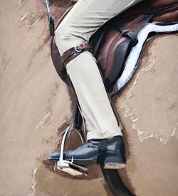Middleburg Horse 5123