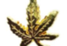 NORML Gold Leaf Pin.jfif