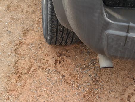 Unidentified Footprints