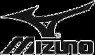 MizunoMJ.png