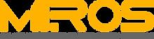 mirors logo .png