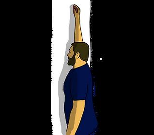 élévation épaule passive 3.png