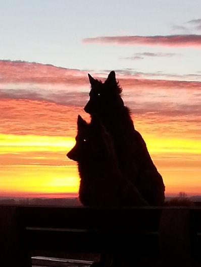Sonnenaufgang1.jpg