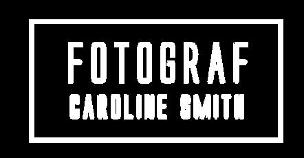 logo_nettside_2017.png