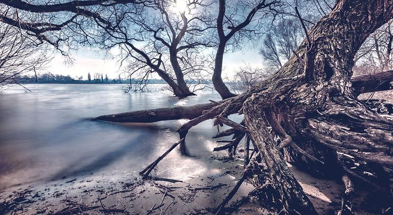 winter iStock-931657418 300dpi_edited_fi