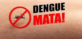 dengue 7.png