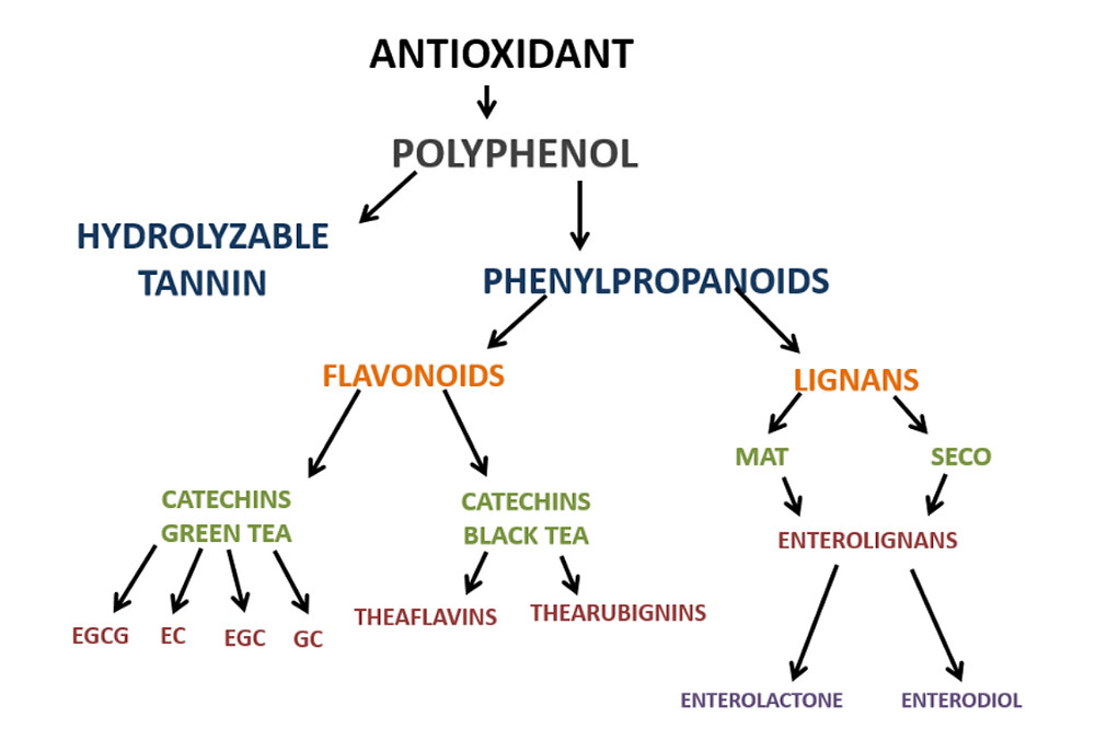 antioxidants, antioxidants in tea, antioxidants in teas