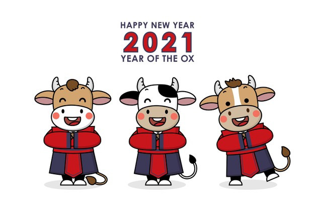 The year of the metal ox, white ox, lunar new year, chinese new year