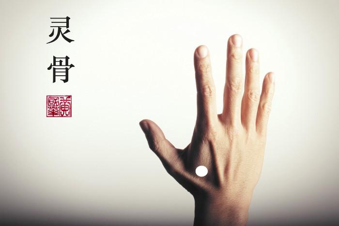 Ling Gu, Da Bai, linggu, dabai, acupuncture point, acupuncture