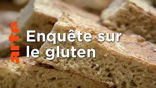 Enqueête sur le gluten.jpg