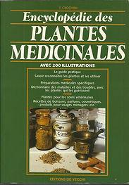 Plantes médicinales.jpg