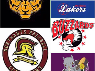 SQUADS SHAPING UP FOR SUMMER SEASON