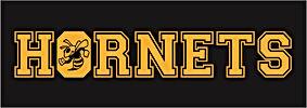 Homerun Hornets Logo.jpg