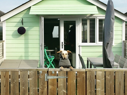 A stay at Salad Days - Dunster Beach Hut
