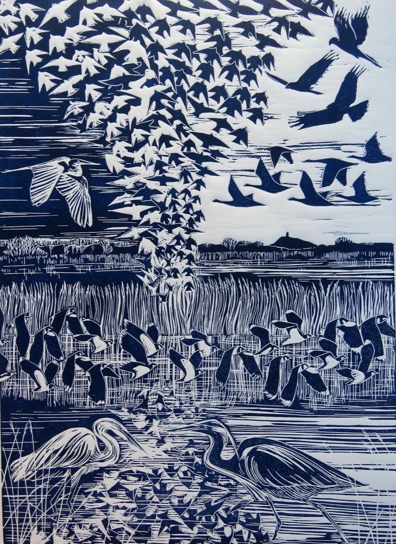 Somerset cool, Jackie Curtis, Somerset blog, Somerset starling murmurations