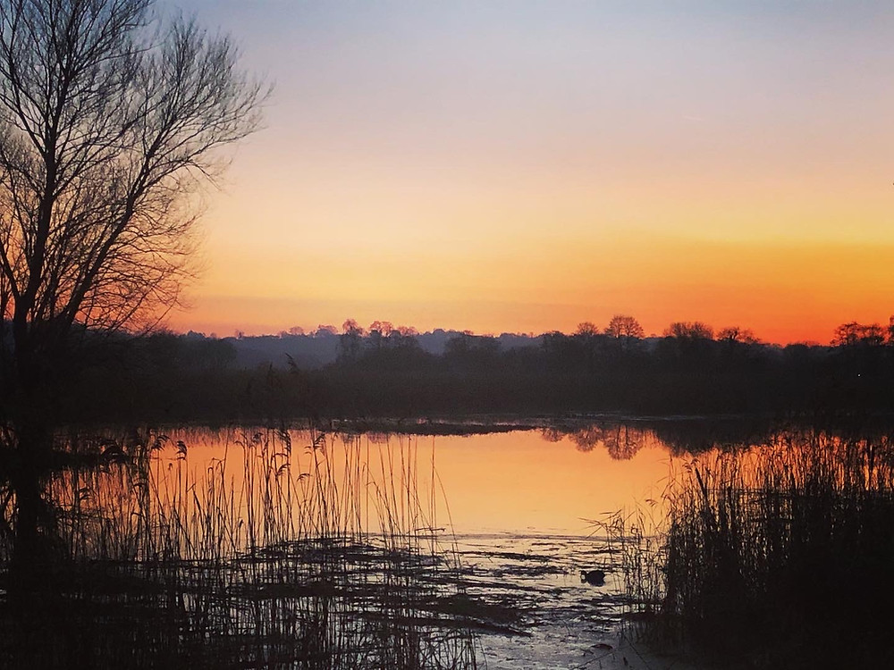 Somerset cool, Somerset sunset, Somerset starling murmurations, RSPB Ham Wall, best Somerset blog, Somerset blogger