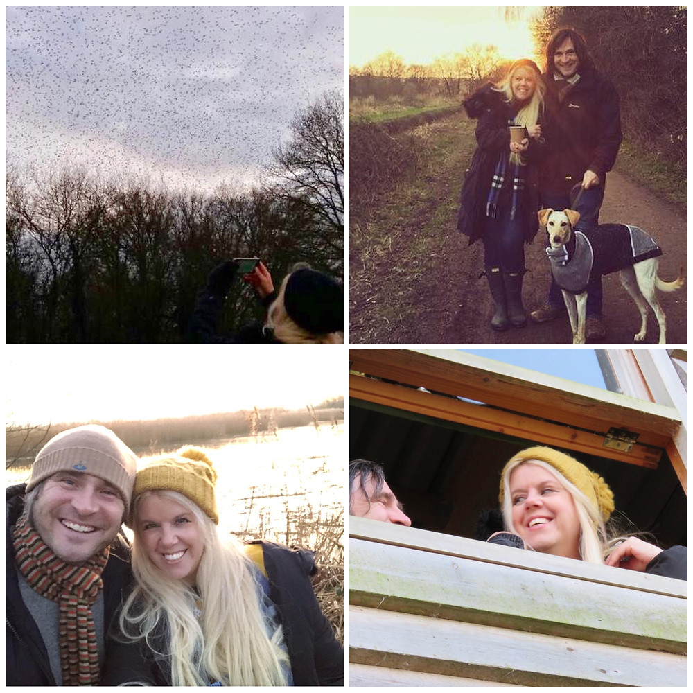 Somerset cool, Somerset blogger, Starling murmurations in Somerset