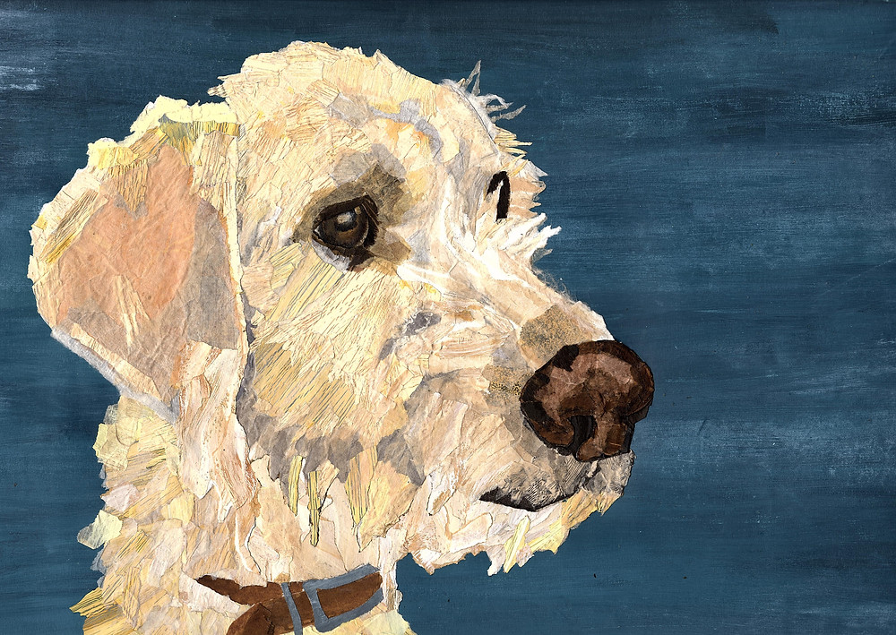 Ness Robinson, Somerset cool, art in Somerset, pet portraits in Somerset, Somerset blog, Somerset bloggers, makers in Somerset