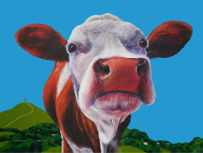 Very cool Cows on Canvas