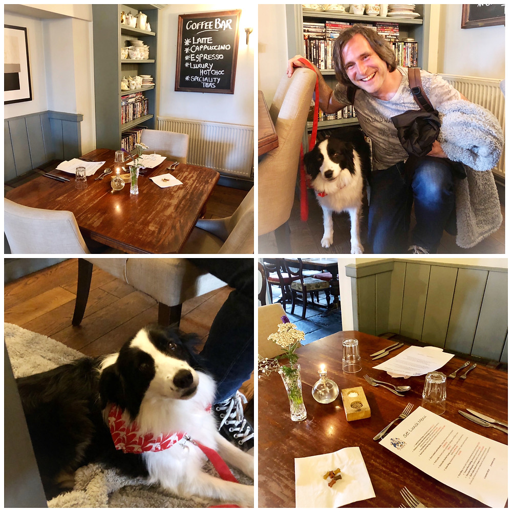 Somerset cool, dog friendly pubs in Somerset, Somerset blogger, the holcombe inn. Somerset blog