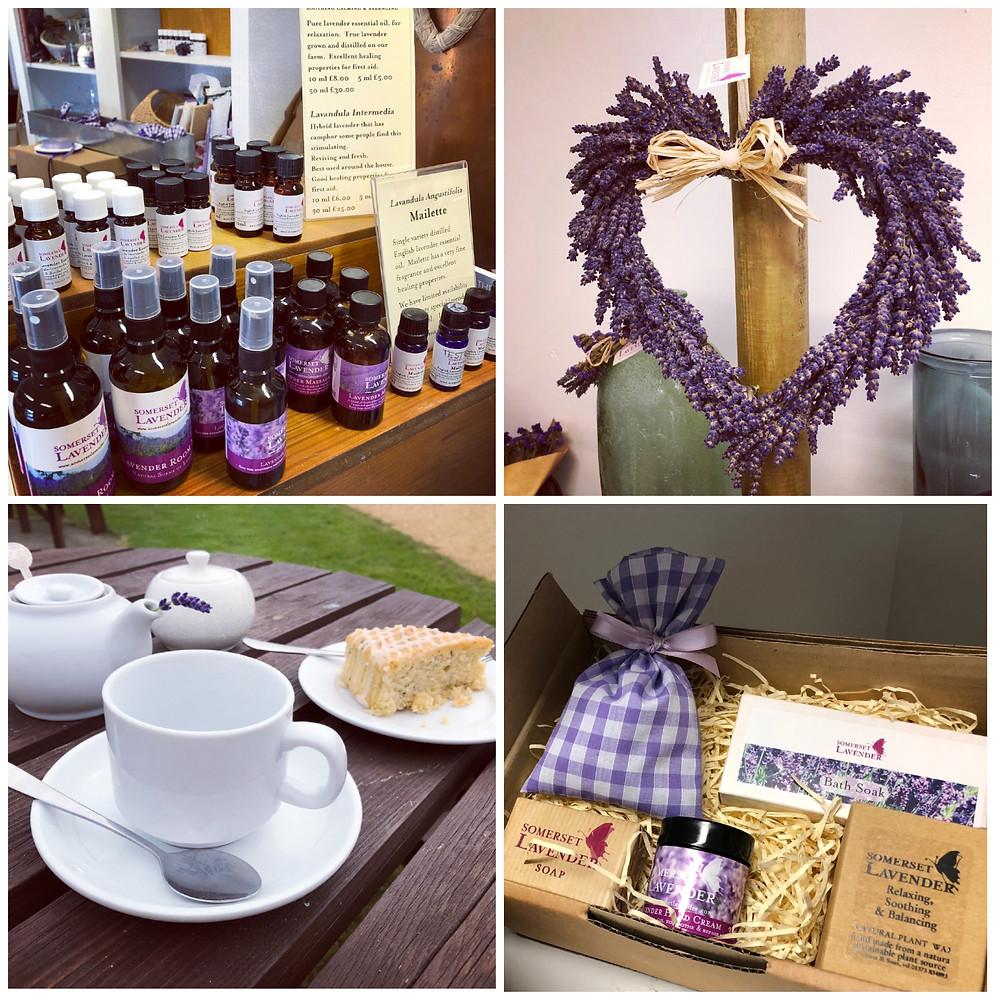 Somerset lavender, Somerset cool, Somerset blog, Somerset blogger, Somerset bloggers, Somerset lifestyle blog