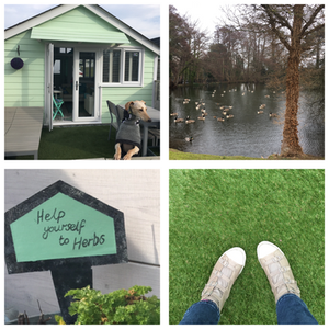 Dog friendly places to stay in Somerset, Somerset blog, Somerset cool, Somerset blogger, Dunster beach hut