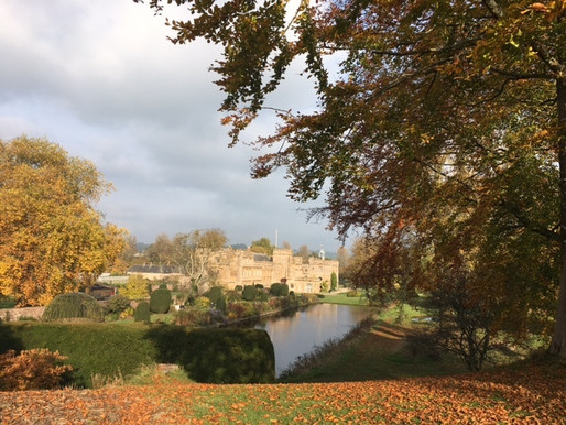 Fabulous Forde Abbey and Gardens